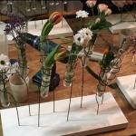 Floristik-Workshop 2018